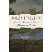 Sonata Fragments: Romantic Narrative in Chopin, Schumann, and Brahms
