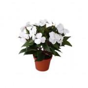 Bellatio flowers & plants Kunstplant heester wit Vlijtig Liesje van 25 cm