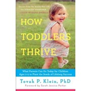 How Toddlers Thrive: What Parents Can Do Today for Children Ages 2-5 to Plant the Seeds of Lifelong Success, Paperback/Tovah P. Klein