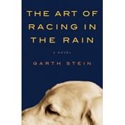 The Art of Racing in the Rain, Hardcover/Garth Stein
