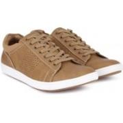 Steve Madden Sneakers For Men(Tan)