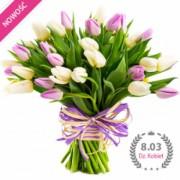 Tulipany dla pań