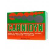 Biofutura Pharma Spa Carnidyn Integratore Alimentare 20 Bustine
