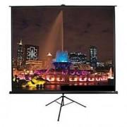 Екран Elite Screen T119UWS1 Tripod, 119' (1:1), 213.4 x 213.4 cm, Black - T119UWS1