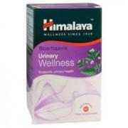 Himalaya Herbals Himalaya Urinary Wellness Boerhaavia