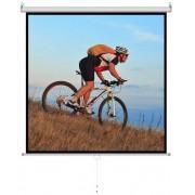 ART Ekran projekcyjny MS-96 244x244