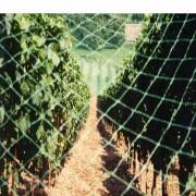 Plasa de protectie contra pasarilor ARRIGONI, 4130NE VOLIERE 15X22, 60 gr/mp