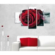 Tablou decorativ multicanvas Destiny, 5 Piese, Trandafir, 247DST2943, Multicolor