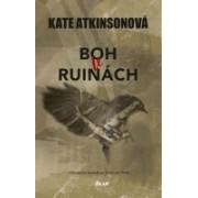 Boh v ruinách(Atkinsonová Kate)