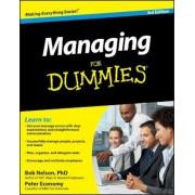 Managing for Dummies, Paperback