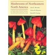 Mushrooms of Northeastern North: America. in the Era of World War I, Paperback/Alan E. Bessette