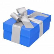 Geen Sinterklaas pakje blauw met zilveren strik 13 cm