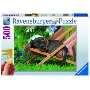 Ravensburger puzzle catel pe sezlong, 500 piese