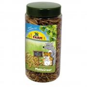 70g JR Farm Larvas da farinha em frasco