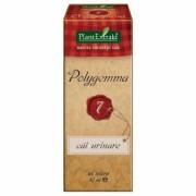 Polygemma nr.7 50ml (cai urinare) PlantExtrakt