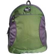 Spyki 15 inch Laptop Backpack(Green, Grey)
