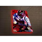 Tablou pe panza iluminat Ledda, 254LED3279, 45 x 70 cm, panza
