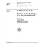 T-Ggd-96-103 Juvenile Justice: Selected Issues Relating to Ojjdp's Reauthorization