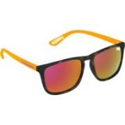 Superdry Rectangular Sunglasses(Orange)