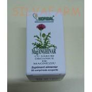 HOFIGAL MAGANGHINAR 60 comprimate acoperite