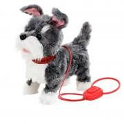Addo Puppy pe o plimbare