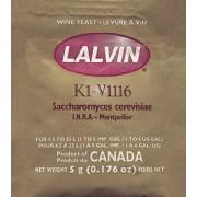 Lalvin All Purpose V1116 drojdie vin