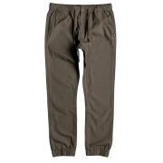 DC Pantaloni Greystoke Taupe EDYNP03083-TMS0 L