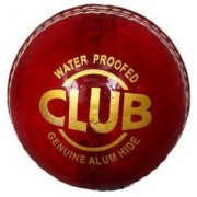 Port Genuine Leather Red Cricket Ball