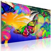 Tableau Papillons exotiques