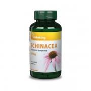 VITAKING – Echinacea kivonat 250mg 90 kapszula