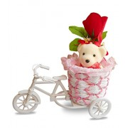 Sky Trends Romantic Teddy Cycle With Rose Gifts For Valentine's Day