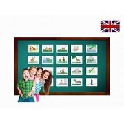 Zoo Animal Flash Cards - English Vocabulary Cards