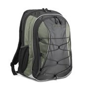 "Lenovo 41U5254 Carrying Case (Backpack) for 39.1 cm (15.4"") Notebook"