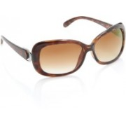 Spykar Over-sized Sunglasses(Brown)