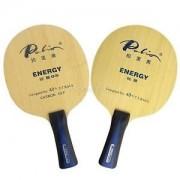 Palio Energy 05