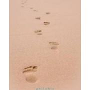 Urme pe nisip - Anne Dauphine Julliand