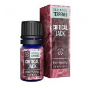 Harmony Terpènes de cannabis CRITICAL JACK (5 ml) (Harmony)