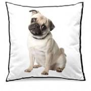 Almofada Cachorro Pug Cão