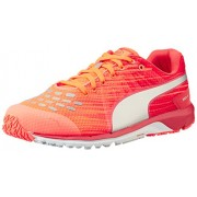 Puma Women's Faas 300 v4 Wn Fiery Coral, Cayenne and Puma Silver Mesh Running Shoes - 8 UK/India (42 EU)