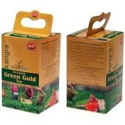 Kangra Green Gold Green Tea - Pack of 2