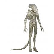 Alien szobrocska - 1979 1/4 arányú Áttetsző prototípus figura - NECA51626