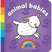 Rainbow Chunkies: Animal Babies/Duck Egg Blue