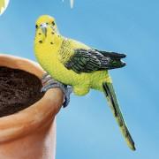 Decoratiune ghiveci Papagal