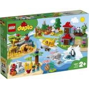 LEGO DUPLO Dieren van de Wereld - 10907