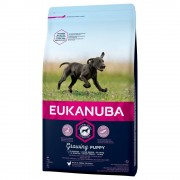 Eukanuba Growing Puppy Large Breed Pollo - 2 x 15 kg