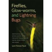 Fireflies, Glow-Worms, and Lightning Bugs: Identification and Natural History of the Fireflies of the Eastern and Central United States and Canada, Paperback/Lynn Frierson Faust