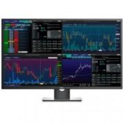 "Monitor 42,51"" 4K P4317Q"