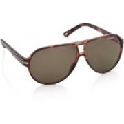Carrera Aviator Sunglasses(Brown)