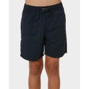 Swell Kids Boys Ryder Beach Short Blue