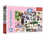Puzzle Trefl, O lume a pisicilor, 60 piese